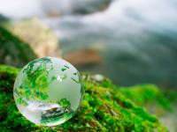 Glass globe on moss covered rock